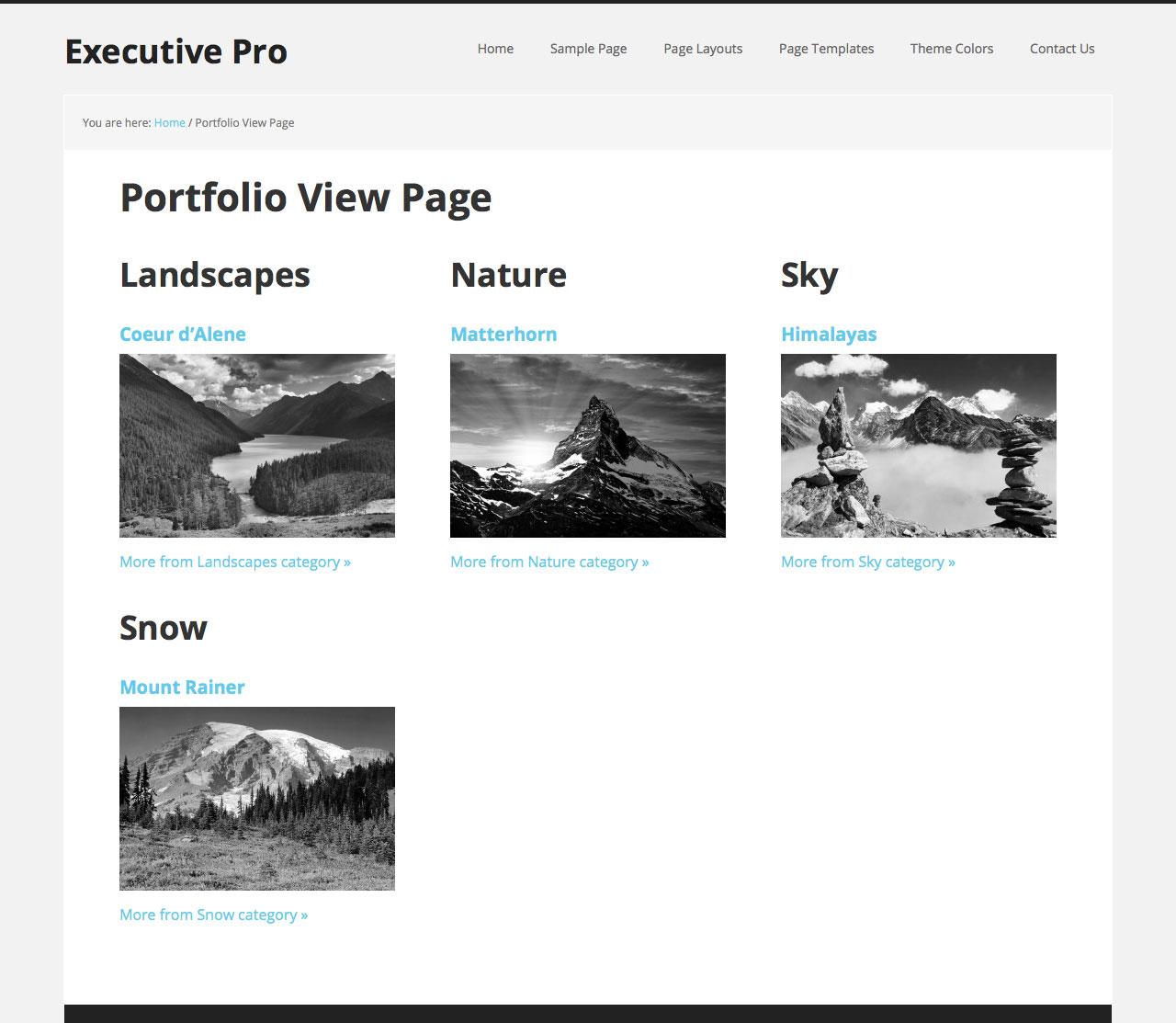 portfolio-view-page-genesis