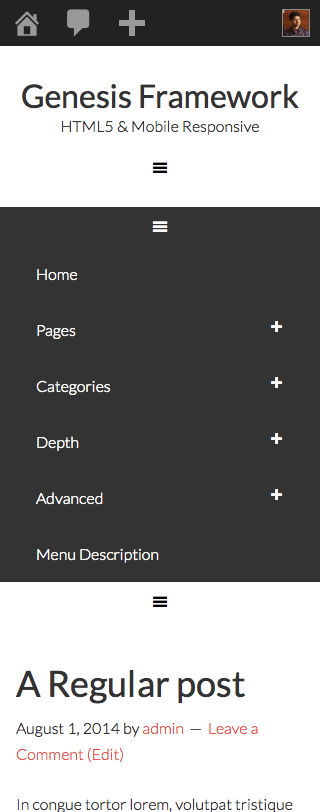 mobile-responsive-primary-menu-expanded