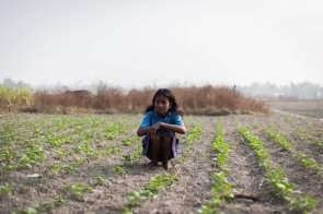 Munni from Kurshakati, Kokrajhar, Assam warms herself in the afternoon sun at the small potatao farm owned by her family.