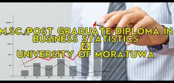 Post Graduate Diploma in Business Statistics