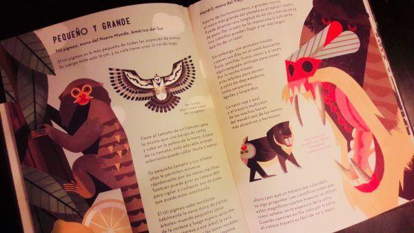 Libros de monos para niños
