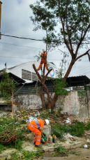 Comlurb Comunidades. Foto: Divulgação