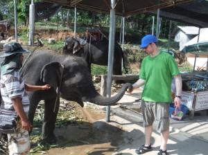 Ed & Elephant
