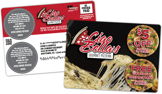2 chip pizza mailer