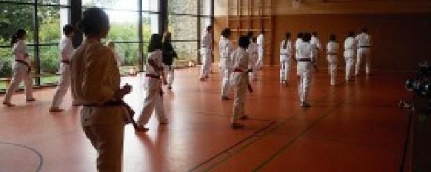 SSK-Taekwondo: Formenlauf gehört traditionell zum Taekwondo