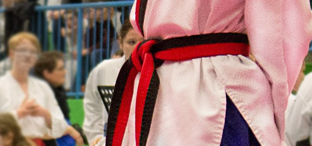 Das Gürtelsystem im Taekwondo