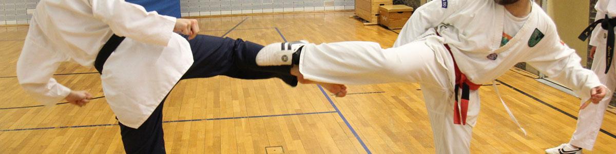 Taekwondo Kerpen: Das Selbstverteidigungskonzept der Deutschen Taekwondo Union