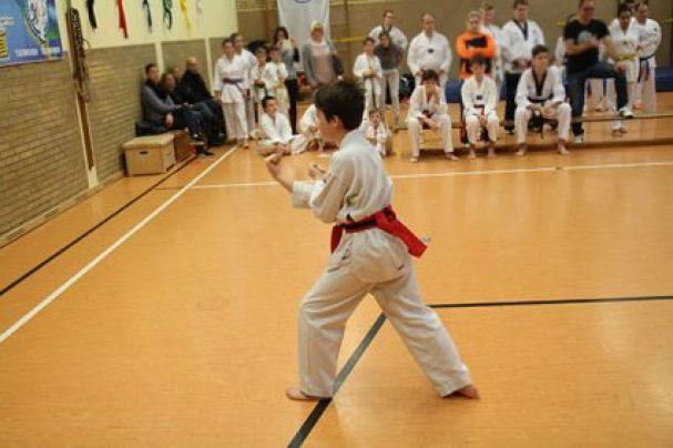ssk-taekwondo-formen-1