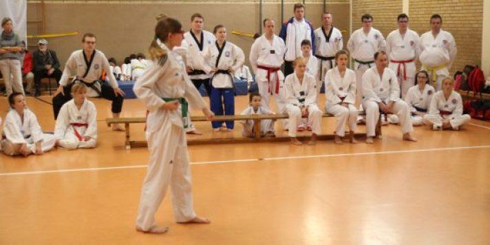 ssk-taekwondo-formen-2