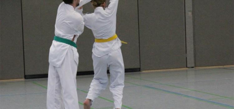 SSK-Taekwondo-Team: Training nach den Ferien