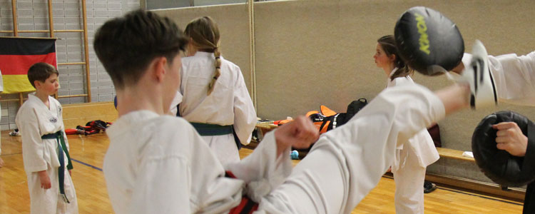 Taekwondo Training: Das sind die wichtigsten Informationen zur Kampfkunst taekwondo