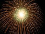鹿島の花火2009(10) : 1024 * 768 pixels, 181KB