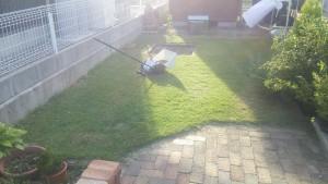 ものの10分で芝生は真っ平らに