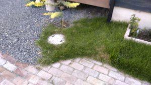 手鋏で刈った芝生