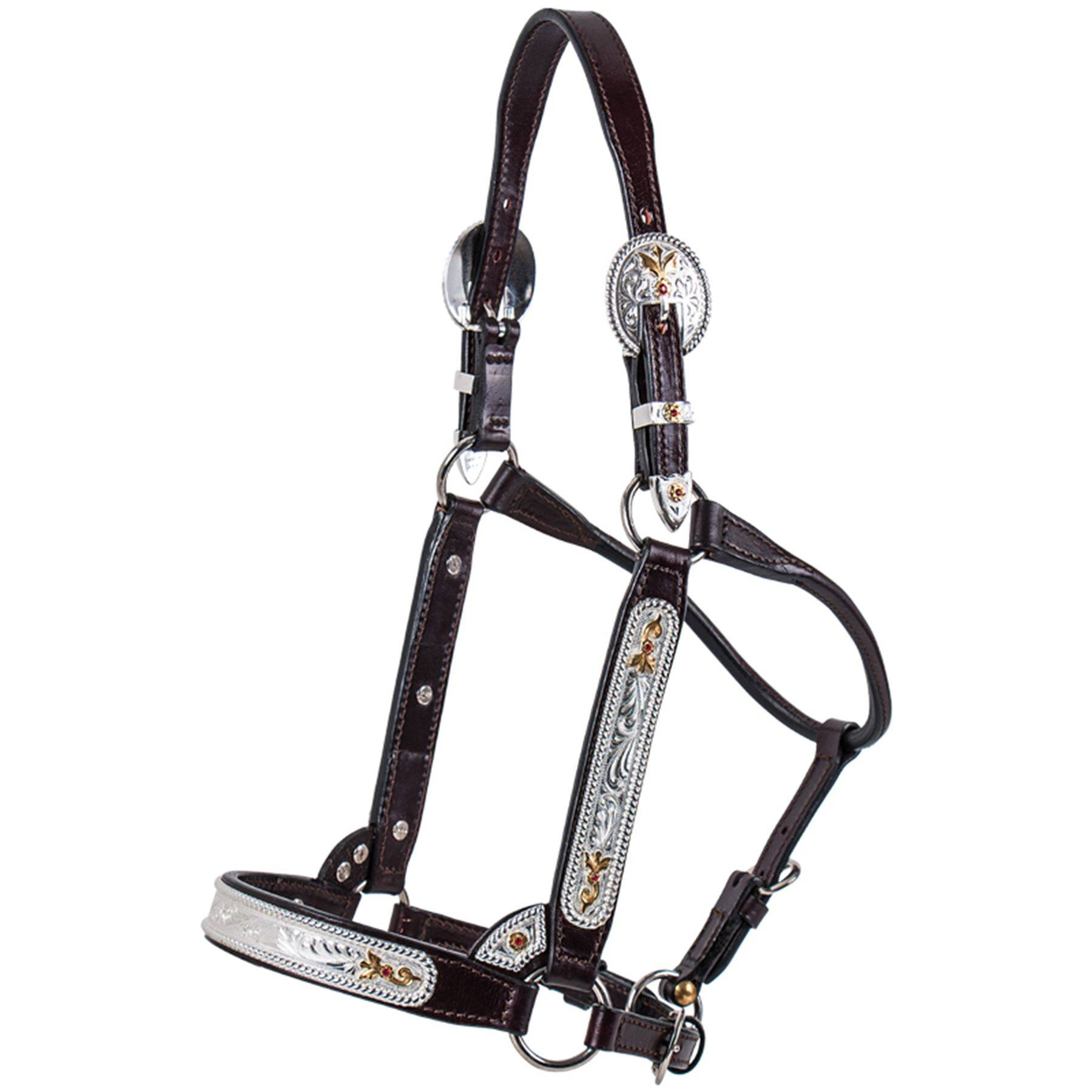 Billy Royal Congress Classic Halter In Billy Royal Qh