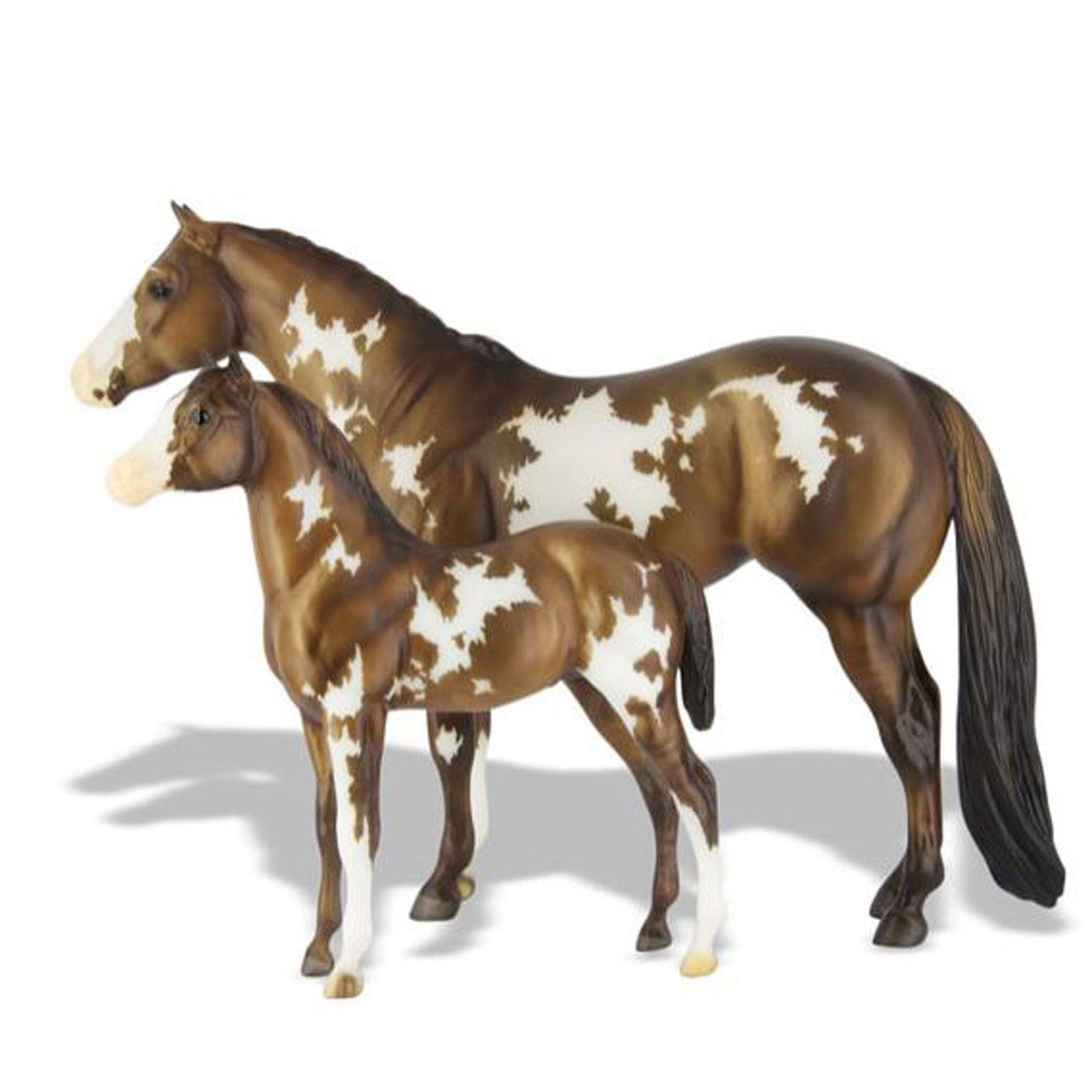 Ponies America Show Wear