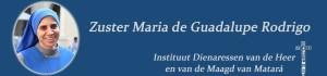 CV van Zuster Guadalupe, SSVM