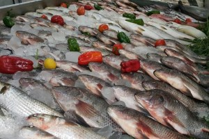 جريدة المال: حماية المستهلك يبرئ أسماك فيليه الباسا