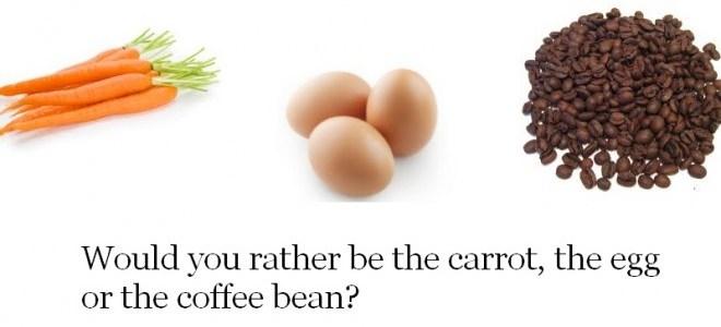 أنت جزرة أم بيضة أم حبة قهوة ؟