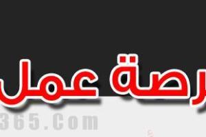 المجلس الاعلى للتعليم بقطر: وظائف للمعلمين والمعلمات لجميع التخصصات والمراحل لعام 2017