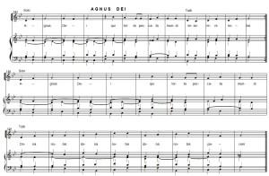 4-Agnus