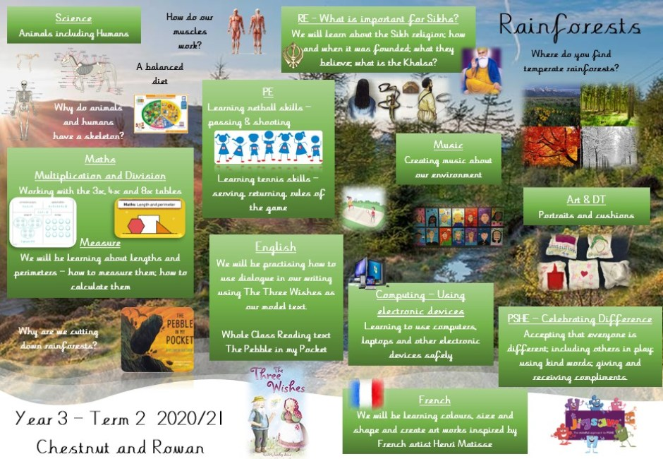 Year 3 Term 2 Overview