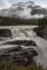 Athabasca Falls im Jasper National Park