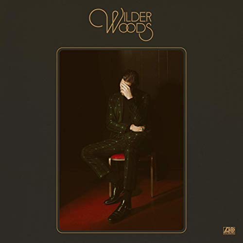WILDER-WOODS-staccatofy-cd