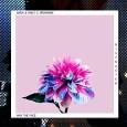 ariza-cd-staccatofy-fe-2