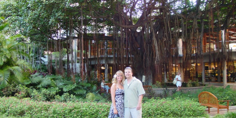 Oahu, Hawaii, vacation, honeymoon, banyan tree