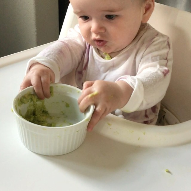 Introduce Solids to Baby: REAL, Applicable Advice for Safely Introducing Solids