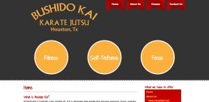 Champions Bushido - Website