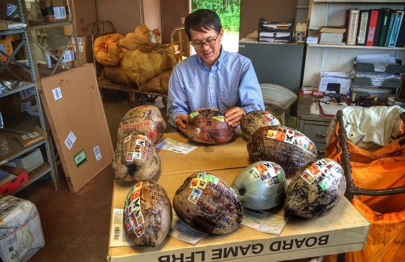 Mail a coconut from Hawaii