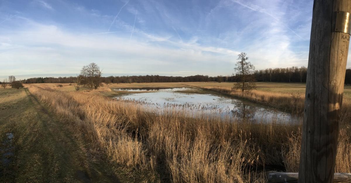 Das zweitgrößte Naturschutzgebiet in Hessen