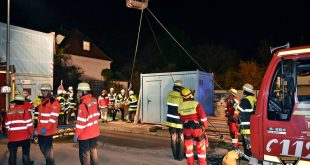 Wildbiesler fällt in Baugrube - Feuerwehr muss ihn bergen Quelle Foto Berufsfeuerwehr München
