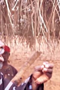 AYALU – Yoruba Movie 2020 [MP4 HD DOWNLOAD]