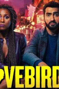The Lovebirds (2020) Movie Download