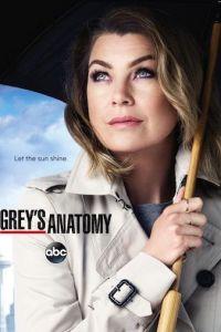 Greys Anatomy Season 17 Complete Web Series [Episode 14 Added]