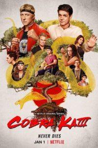Cobra Kai Season 3 (S03) Hindi Complete Web Series