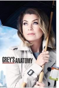 Greys Anatomy Season 17 Episode 13 (S17E13) Subtitles