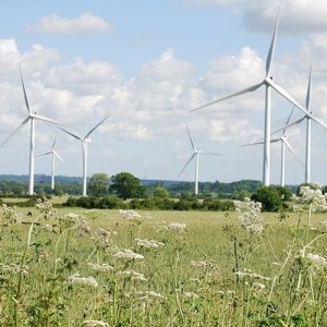 Wind turbines in a field, rotating under blue skies with fluffy, white clouds.