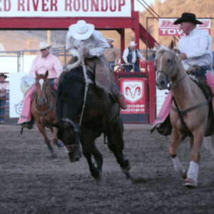 A rodeo cowboy rides a horse at the Crooked River Roundup.