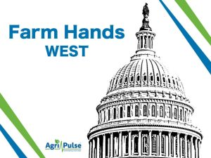 Farm Hands West: Puglia added to the Agricultural Policy Advisory Committee | 2020-07-21