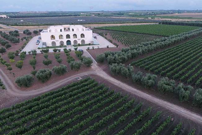 Tinazzi – Venetian expertise in Italy's Puglia region