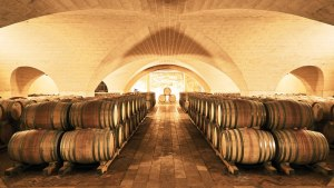 Puglia Is Italy's New Wine and Food Hub – Robb Report