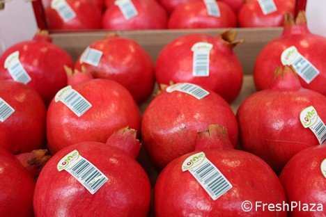 Boom in orders for Italian pomegranates -