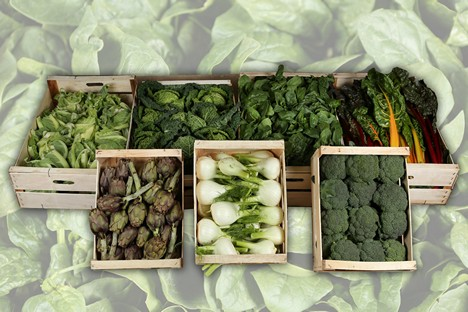 High demand for organic vegetables from Puglia -