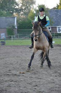 Turbo en ik 2010