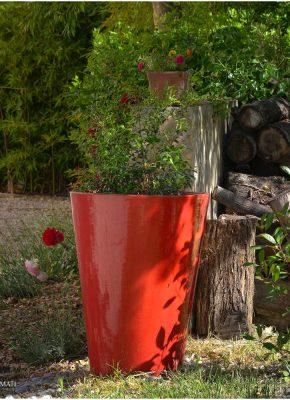jardin_DSC_7243_photographe hotel chambre d hote Avignon Provence