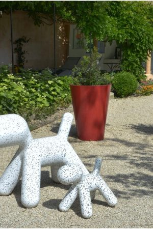 jardin_DSC_7271_photographe hotel chambre d hote Avignon Provence